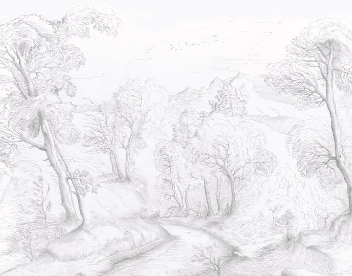 Inner Forest Wallpaper